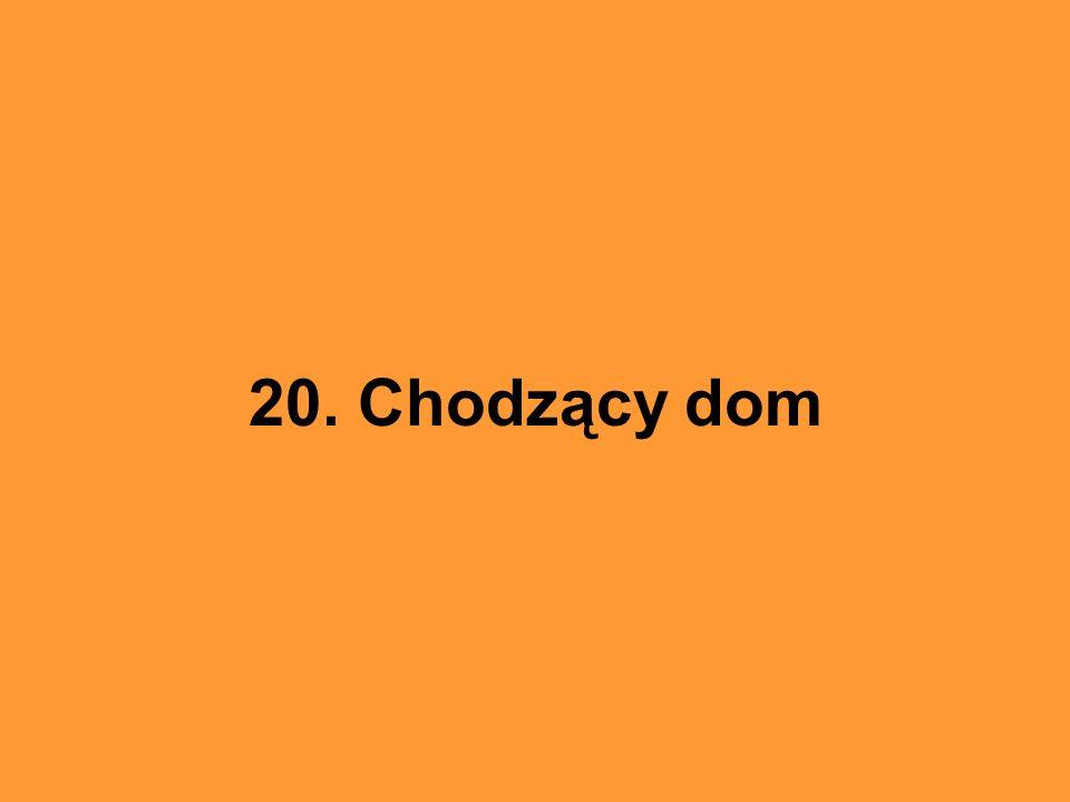 20. Chodzący dom