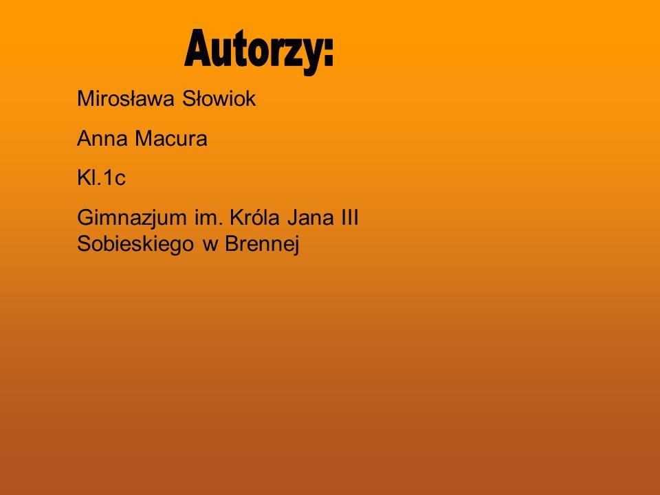 Mirosława Słowiok Anna Macura Kl.1c Gimnazjum im. Króla Jana III Sobieskiego w Brennej