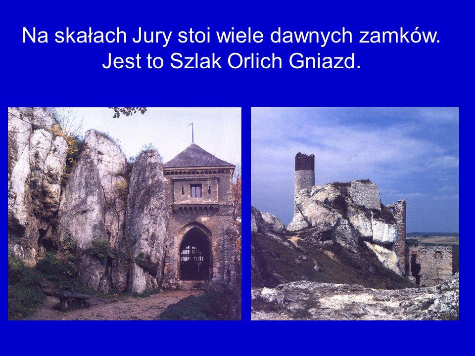 Na skałach Jury stoi wiele dawnych zamków. Jest to Szlak Orlich Gniazd.