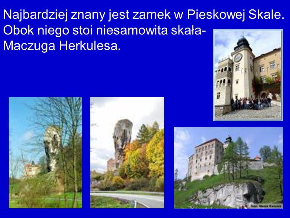 Najbardziej znany jest zamek w Pieskowej Skale.