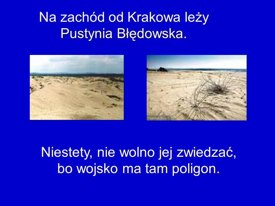 Na zachód od Krakowa leży Pustynia Błędowska.