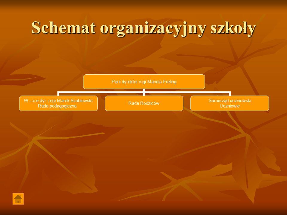 Schemat organizacyjny szkoły Pani dyrektor mgr Mariola Freling W – c e dyr.