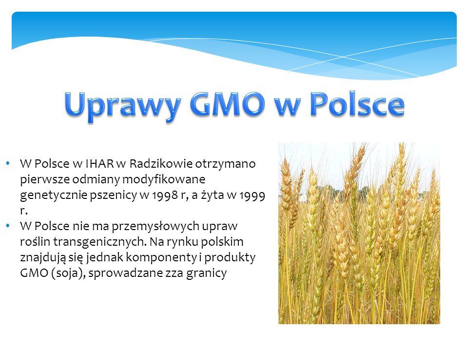 W Polsce w IHAR w Radzikowie otrzymano pierwsze odmiany modyfikowane genetycznie pszenicy w 1998 r, a żyta w 1999 r.