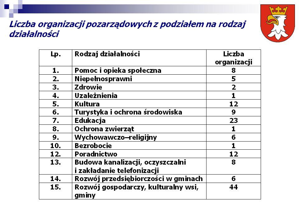 Liczba organizacji pozarządowych z podziałem na rodzaj działalności