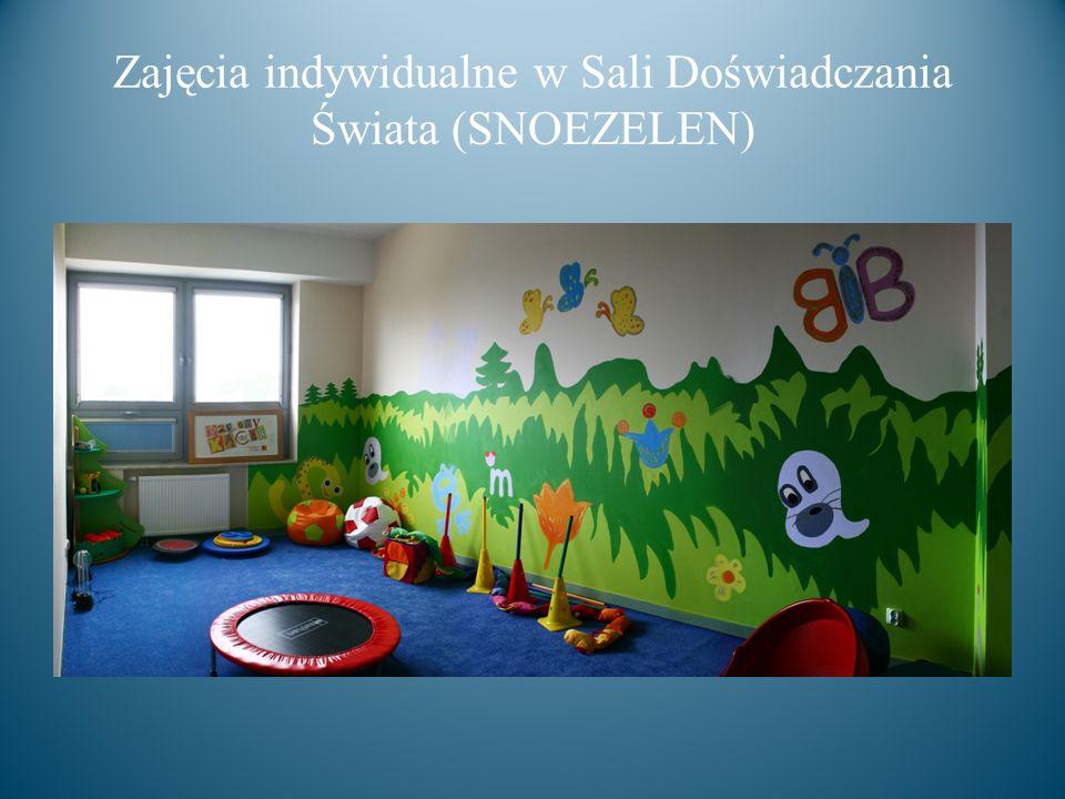 Zajęcia indywidualne w Sali Doświadczania Świata (SNOEZELEN)