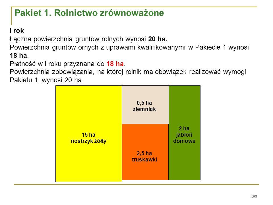 26 0,5 ha ziemniak 15 ha nostrzyk żółty 2 ha jabłoń domowa 2,5 ha truskawki I rok Łączna powierzchnia gruntów rolnych wynosi 20 ha.