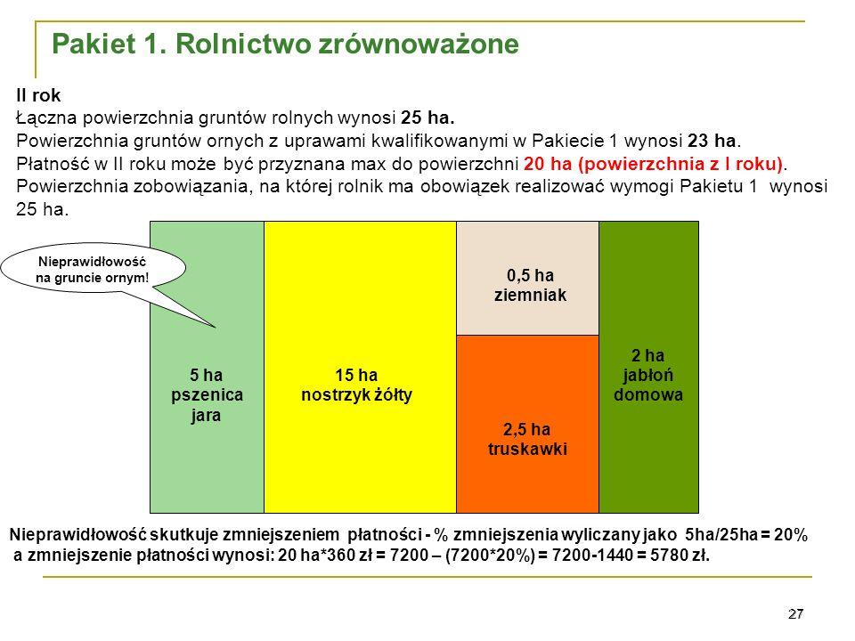 27 0,5 ha ziemniak 15 ha nostrzyk żółty 2 ha jabłoń domowa 2,5 ha truskawki II rok Łączna powierzchnia gruntów rolnych wynosi 25 ha.