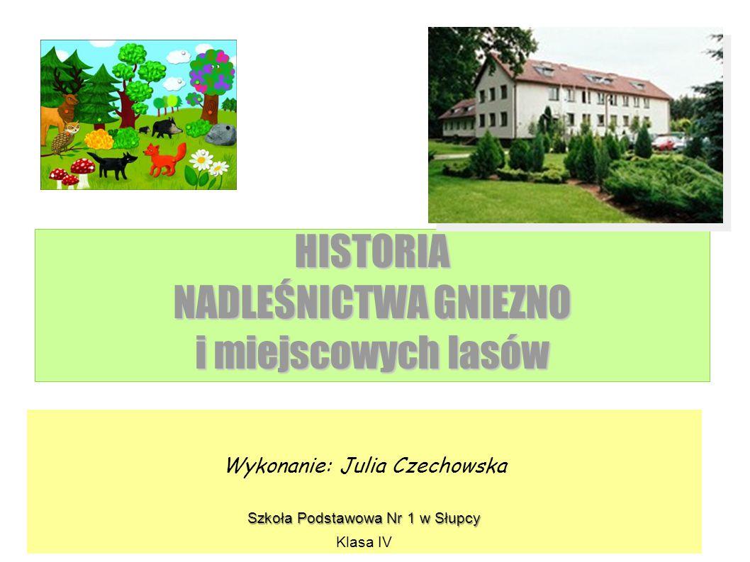 HISTORIA NADLEŚNICTWA GNIEZNO i miejscowych lasów Wykonanie: Julia Czechowska Szkoła Podstawowa Nr 1 w Słupcy Klasa IV