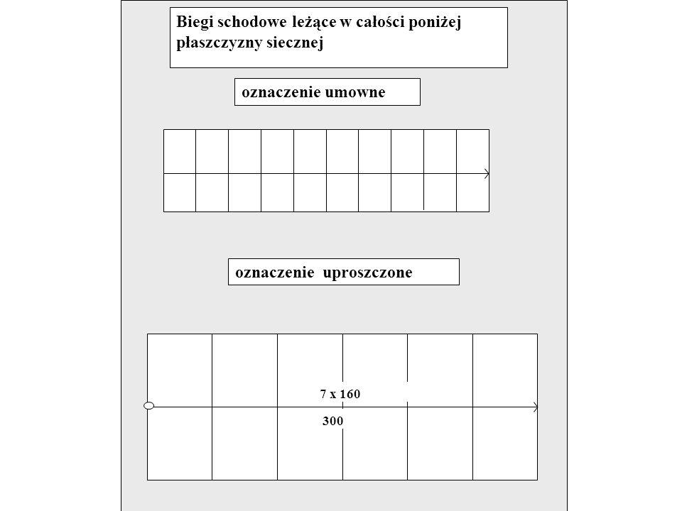 Biegi schodowe przecięte płaszczyzną sieczną oznaczenie umowne oznaczenie uproszczone 7 x 160 300