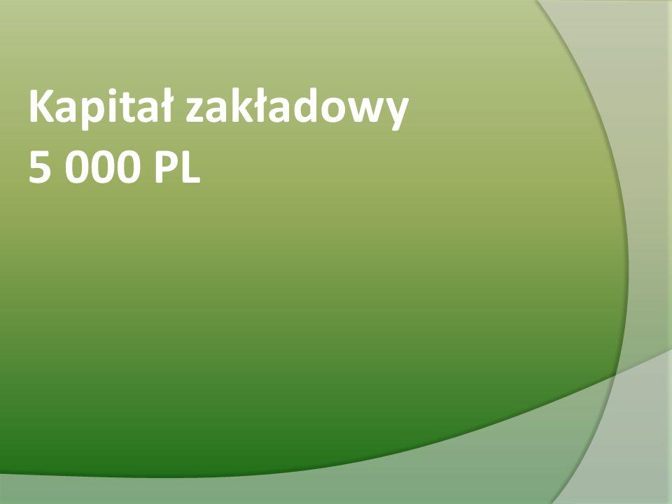 Kapitał zakładowy 5 000 PL