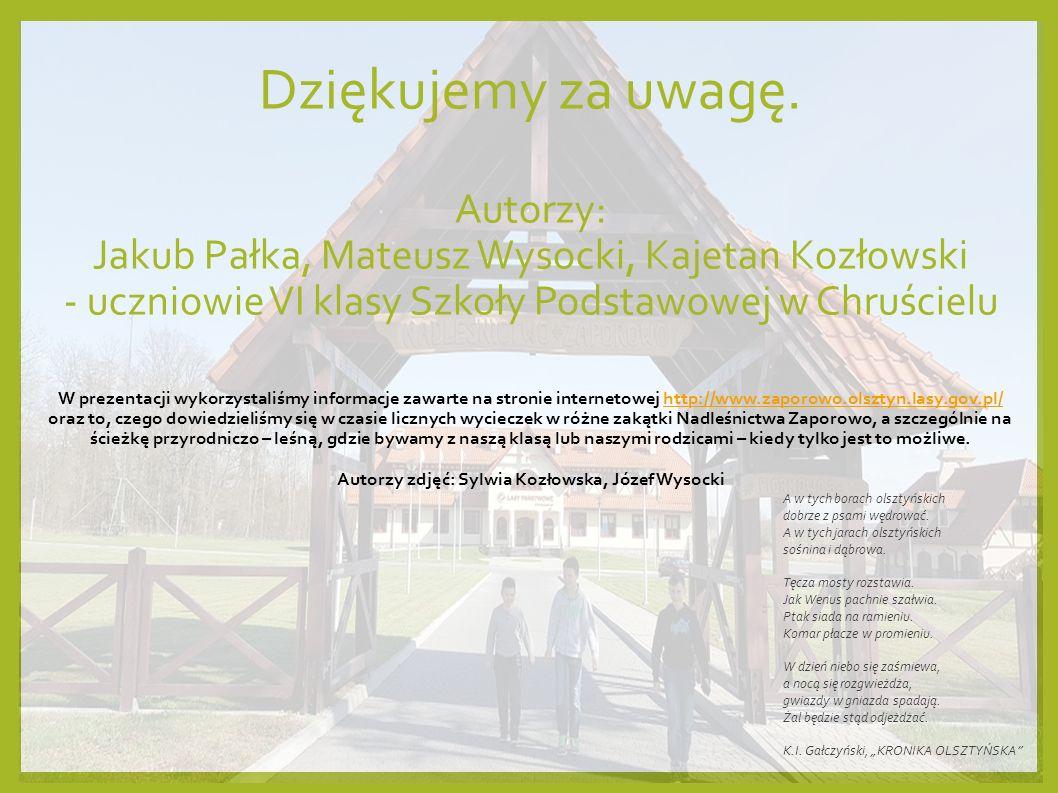 To jest NASZE NADLEŚNICTWO Być może w Polsce są nadleśnictwa piękniejsze, większe, w których znajdują się cenniejsze i rzadziej spotykane gatunki roślin i zwierząt.