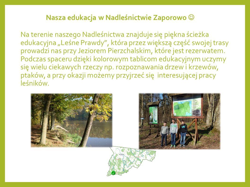 Ochrona Przyrody w Nadleśnictwie Zaporowo 71 % terenów nadleśnictwa to obszary objęte ochroną, zaliczamy do nich przede wszystkim: 2 rezerwaty przyrody, 5 obszarów chronionego krajobrazu, 6 obszarów Natura 2000, użytki ekologiczne.