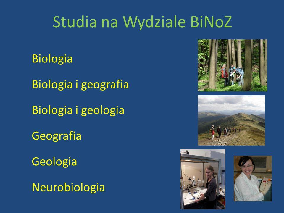 Studia na Wydziale BiNoZ Biologia Biologia i geografia Biologia i geologia Geografia Geologia Neurobiologia