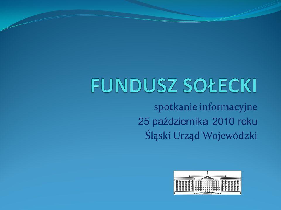 spotkanie informacyjne 25 października 2010 roku Śląski Urząd Wojewódzki