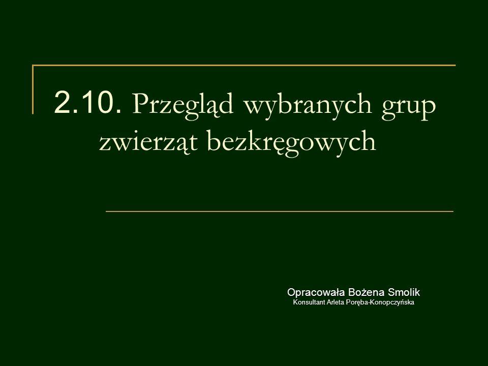 Źródła J.Loritz-Dobrowolska i wsp.,Biologia 1,Operon,2009r.