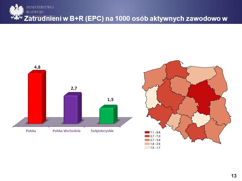 13 Zatrudnieni w B+R (EPC) na 1000 osób aktywnych zawodowo w 2011 r.