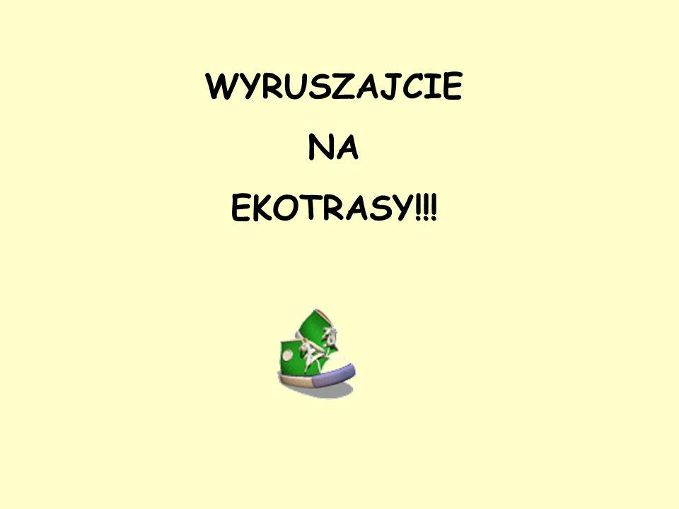 WYRUSZAJCIE NA EKOTRASY!!!