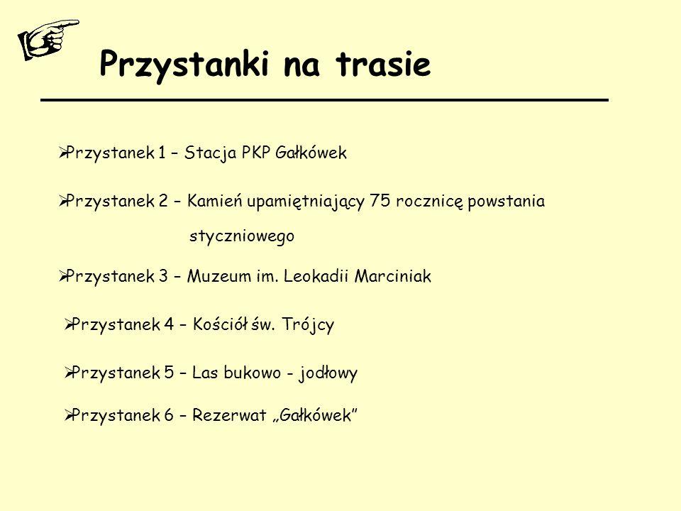 Przystanki na trasie  Przystanek 1 – Stacja PKP Gałkówek  Przystanek 2 – Kamień upamiętniający 75 rocznicę powstania styczniowego  Przystanek 3 – M