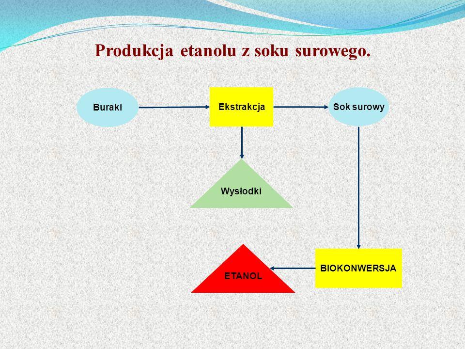 Buraki Ekstrakcja BIOKONWERSJA Sok surowy ETANOL Wysłodki Produkcja etanolu z soku surowego.