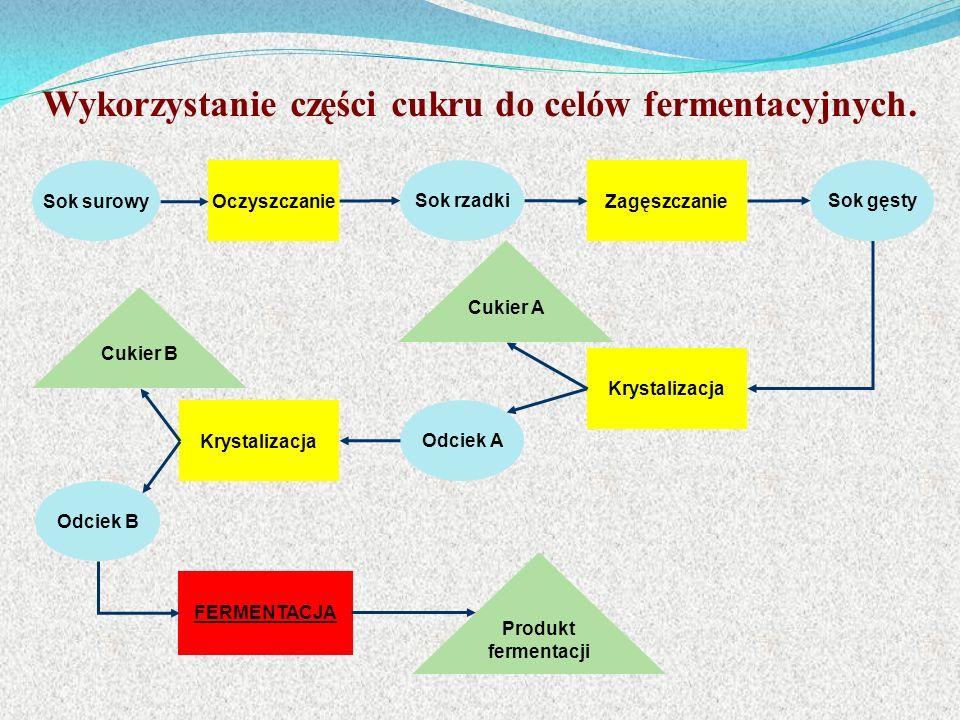 Sok surowy OczyszczanieZagęszczanie FERMENTACJA Sok rzadkiSok gęsty Krystalizacja Odciek A Krystalizacja Odciek B Produkt fermentacji Cukier A Cukier B Wykorzystanie części cukru do celów fermentacyjnych.