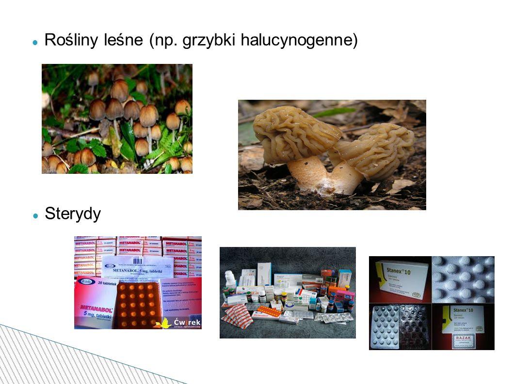 Rośliny leśne (np. grzybki halucynogenne) Sterydy