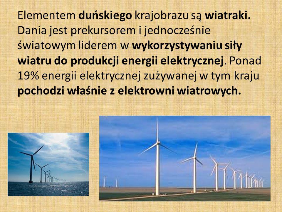 Elementem duńskiego krajobrazu są wiatraki.