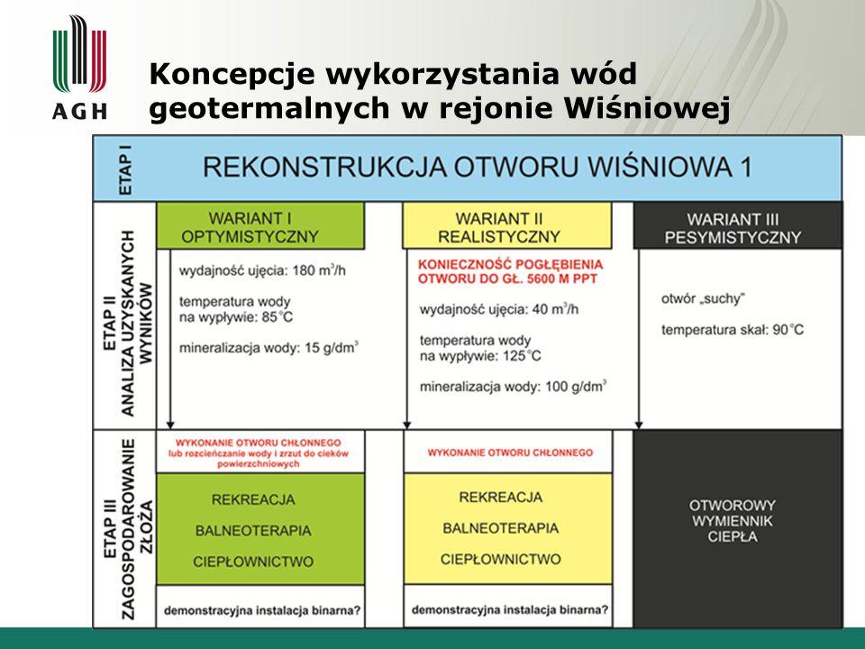 Koncepcje wykorzystania wód geotermalnych w rejonie Wiśniowej