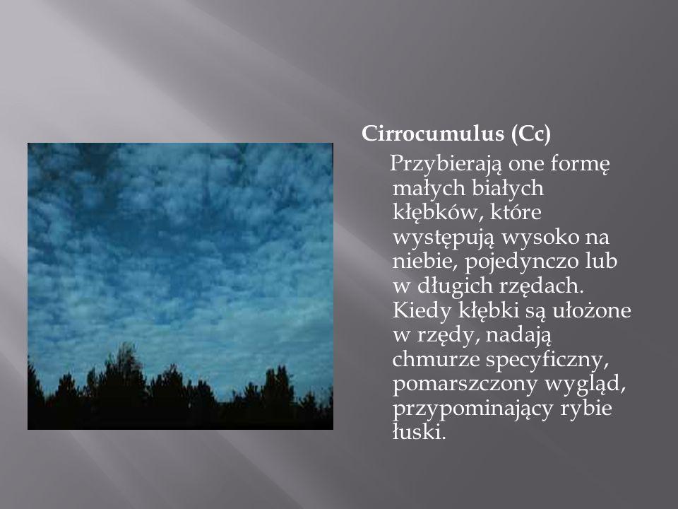 Cirrocumulus (Cc) Przybierają one formę małych białych kłębków, które występują wysoko na niebie, pojedynczo lub w długich rzędach. Kiedy kłębki są uł