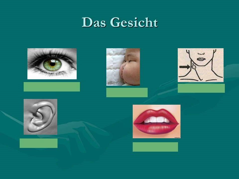 """II.Z rozsypanki ułóż dialog """"Beim Arzt """"Beim Arzt -Guten Tag, Herr Doktor -Gutern Tag, Agnes."""