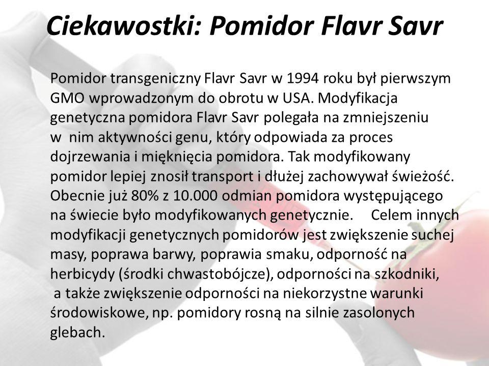 Ciekawostki: Pomidor Flavr Savr Pomidor transgeniczny Flavr Savr w 1994 roku był pierwszym GMO wprowadzonym do obrotu w USA.