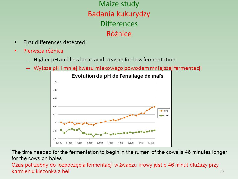 Maize study Badania kukurydzy Differences Różnice First differences detected: Pierwsza różnica – Higher pH and less lactic acid: reason for less fermentation – Wyższe pH i mniej kwasu mlekowego powodem mniejszej fermentacji 13 The time needed for the fermentation to begin in the rumen of the cows is 46 minutes longer for the cows on bales.