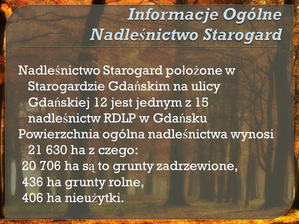 Nadle ś nictwo Starogard utworzono 01.01.1973 r.