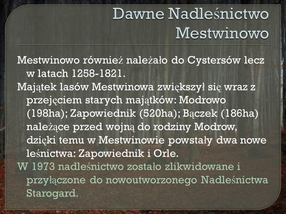 Mestwinowo równie ż nale ż a ł o do Cystersów lecz w latach 1258-1821.