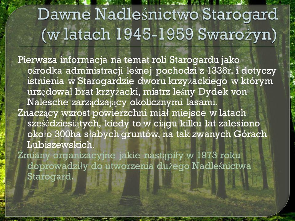 Pierwsza informacja na temat roli Starogardu jako o ś rodka administracji le ś nej pochodzi z 1336r.