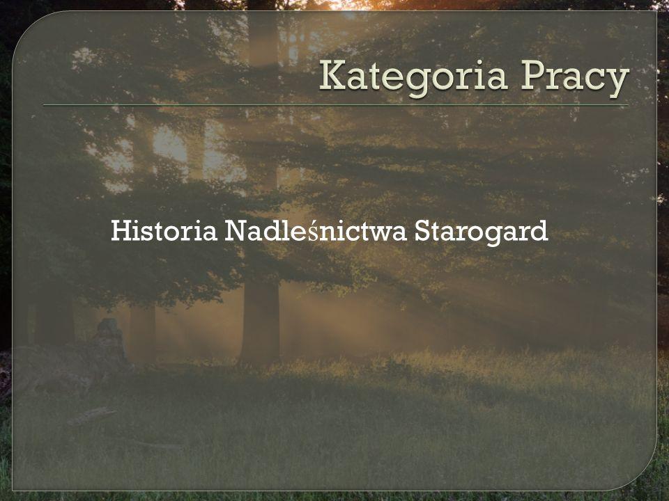 Historia Nadle ś nictwa Starogard