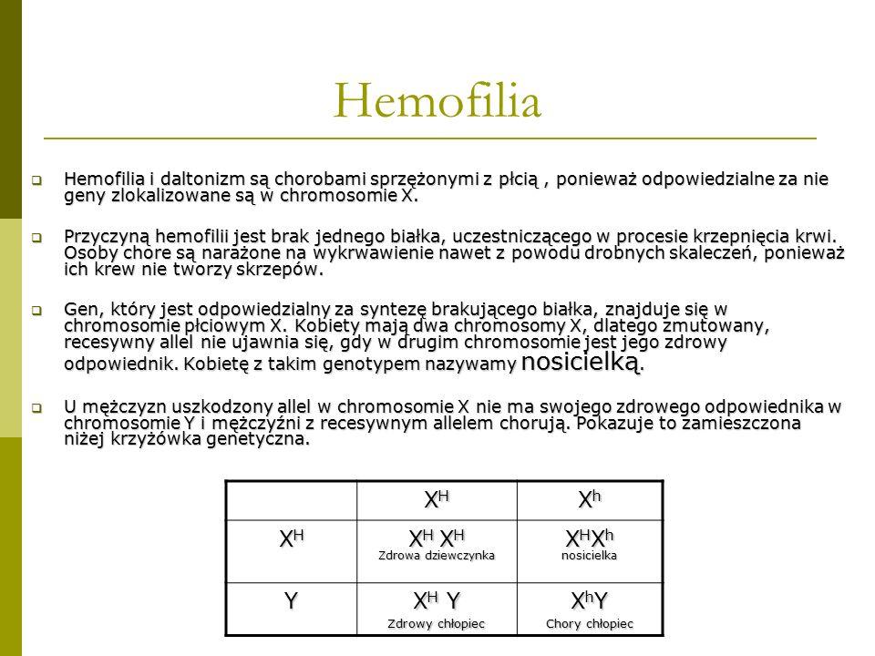 Hemofilia  Hemofilia i daltonizm są chorobami sprzężonymi z płcią, ponieważ odpowiedzialne za nie geny zlokalizowane są w chromosomie X.  Przyczyną