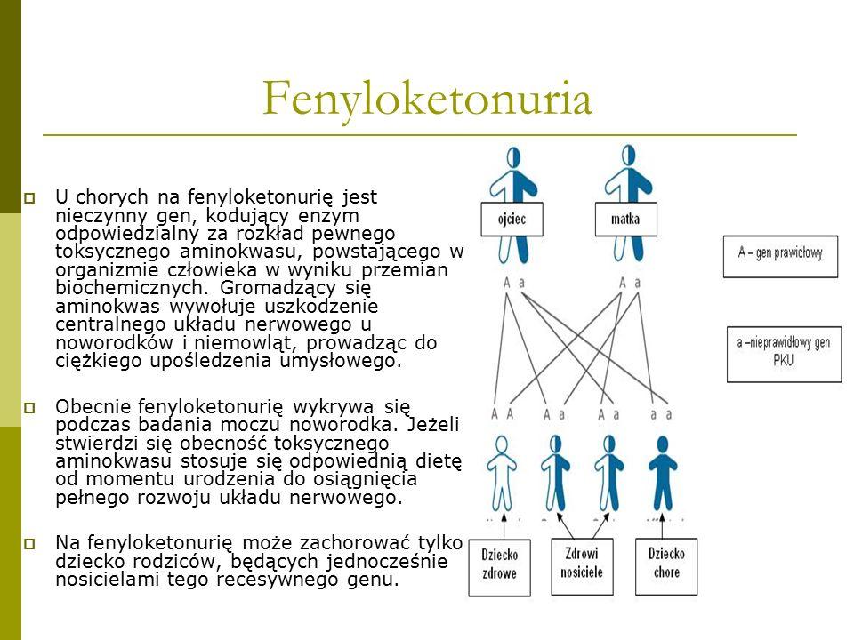 Fenyloketonuria  U chorych na fenyloketonurię jest nieczynny gen, kodujący enzym odpowiedzialny za rozkład pewnego toksycznego aminokwasu, powstające