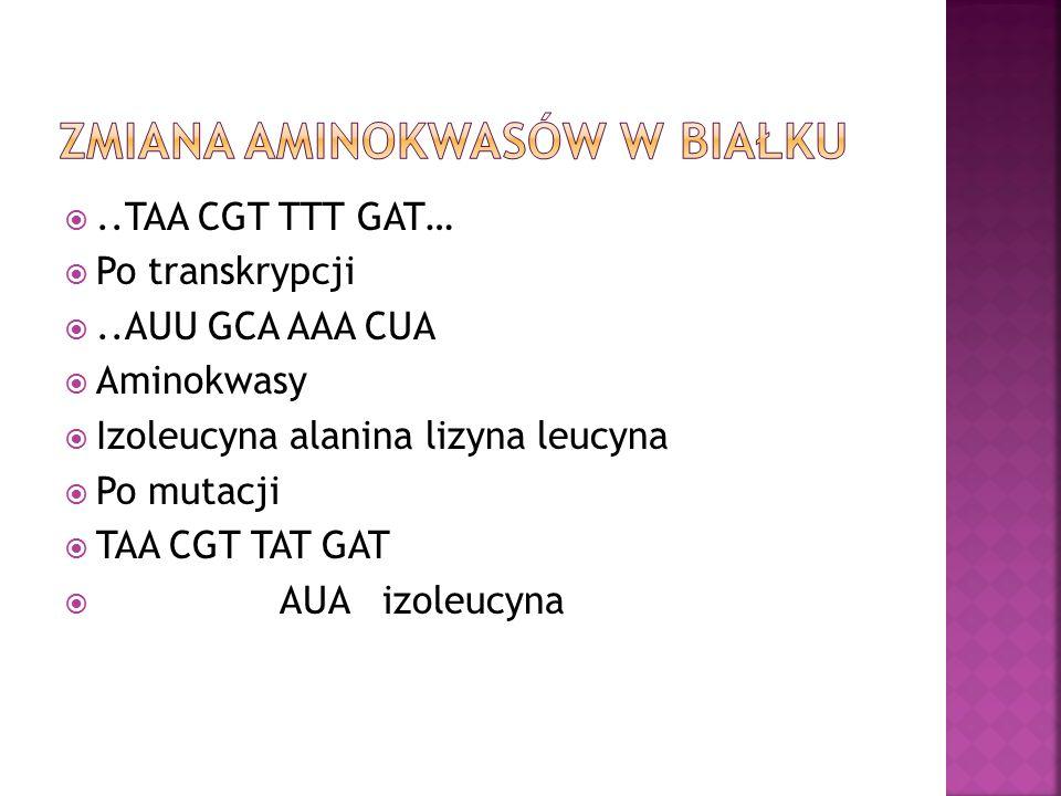 ..TAA CGT TTT GAT…  Po transkrypcji ..AUU GCA AAA CUA  Aminokwasy  Izoleucyna alanina lizyna leucyna  Po mutacji  TAA CGT TAT GAT  AUA izoleucyna