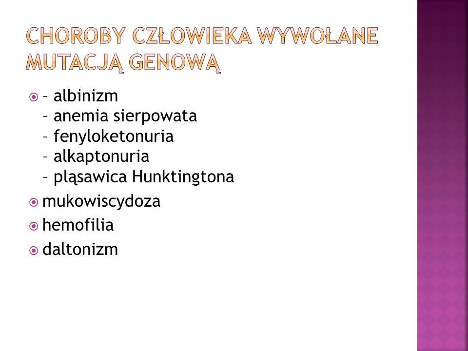  – albinizm – anemia sierpowata – fenyloketonuria – alkaptonuria – pląsawica Hunktingtona  mukowiscydoza  hemofilia  daltonizm