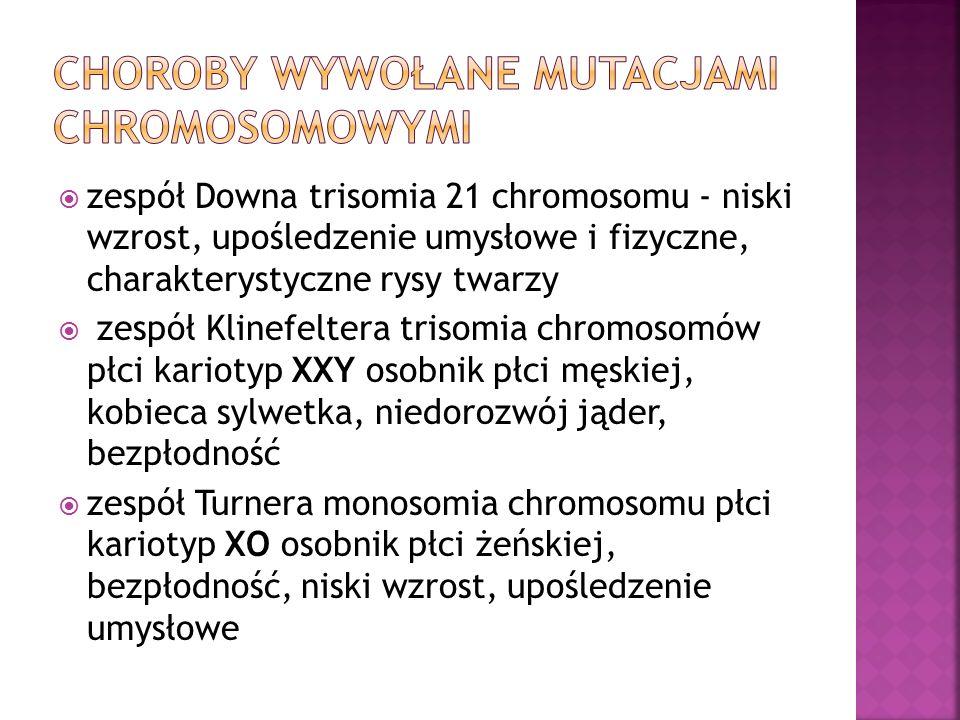  zespół Downa trisomia 21 chromosomu - niski wzrost, upośledzenie umysłowe i fizyczne, charakterystyczne rysy twarzy  zespół Klinefeltera trisomia chromosomów płci kariotyp XXY osobnik płci męskiej, kobieca sylwetka, niedorozwój jąder, bezpłodność  zespół Turnera monosomia chromosomu płci kariotyp XO osobnik płci żeńskiej, bezpłodność, niski wzrost, upośledzenie umysłowe