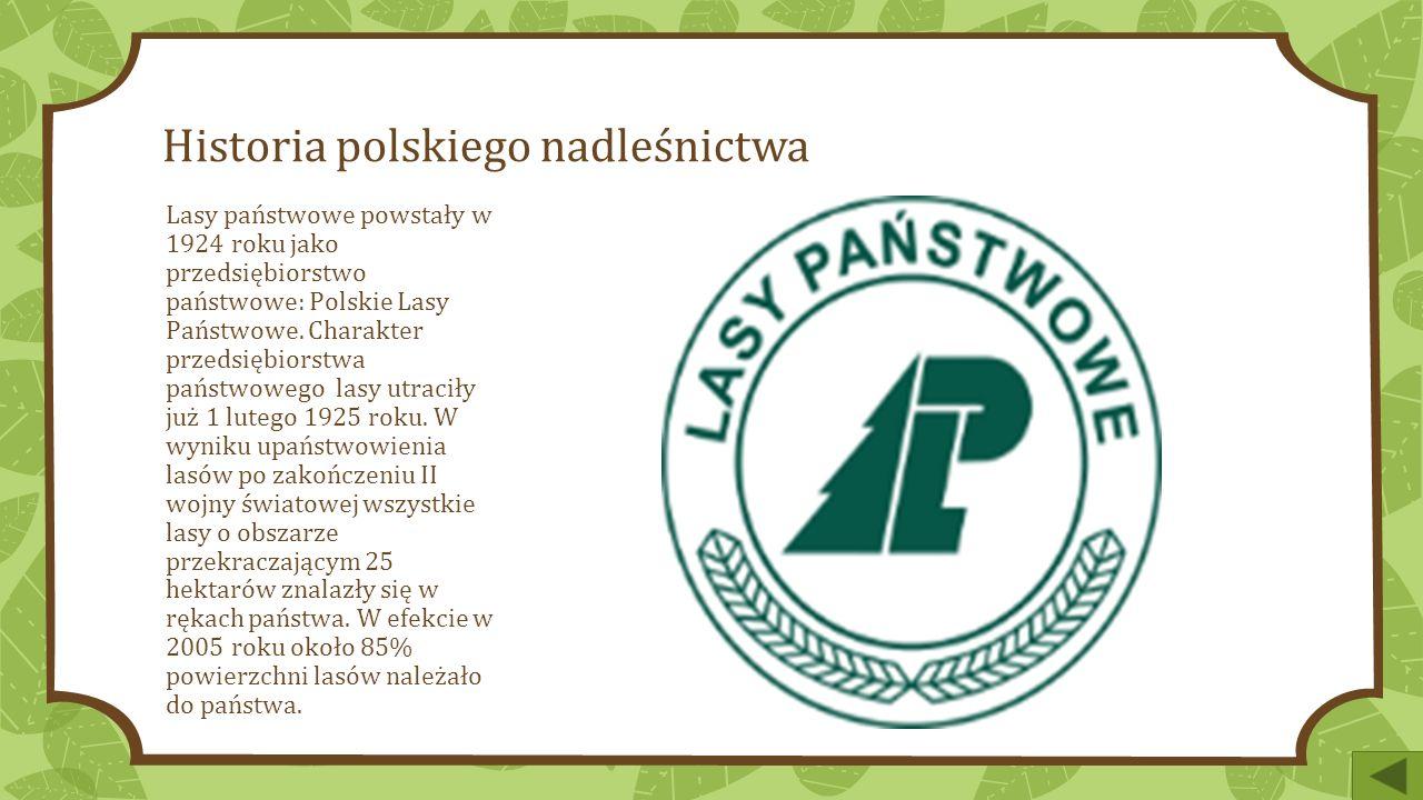 Historia polskiego nadleśnictwa Lasy państwowe powstały w 1924 roku jako przedsiębiorstwo państwowe: Polskie Lasy Państwowe.