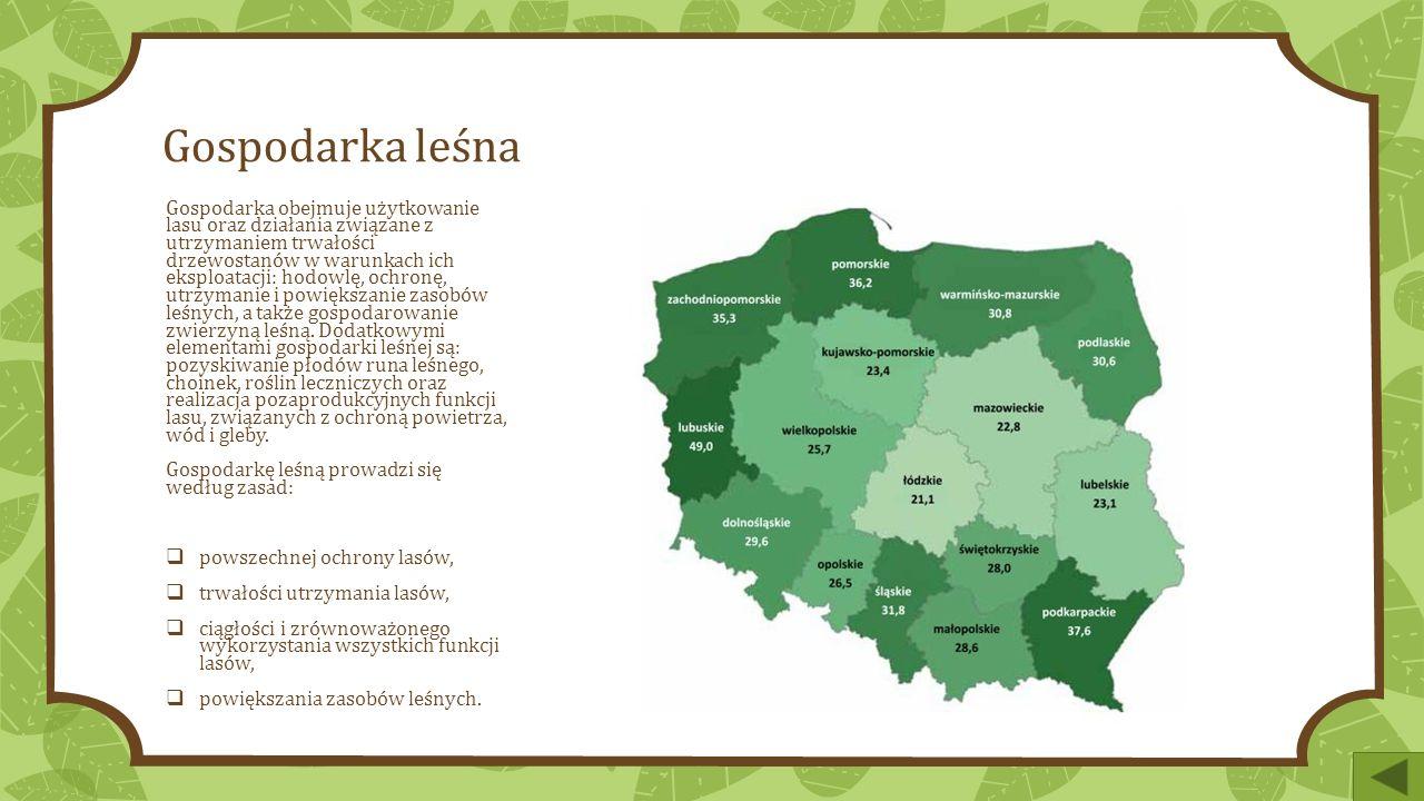 Gospodarka leśna Gospodarka obejmuje użytkowanie lasu oraz działania związane z utrzymaniem trwałości drzewostanów w warunkach ich eksploatacji: hodowlę, ochronę, utrzymanie i powiększanie zasobów leśnych, a także gospodarowanie zwierzyną leśną.