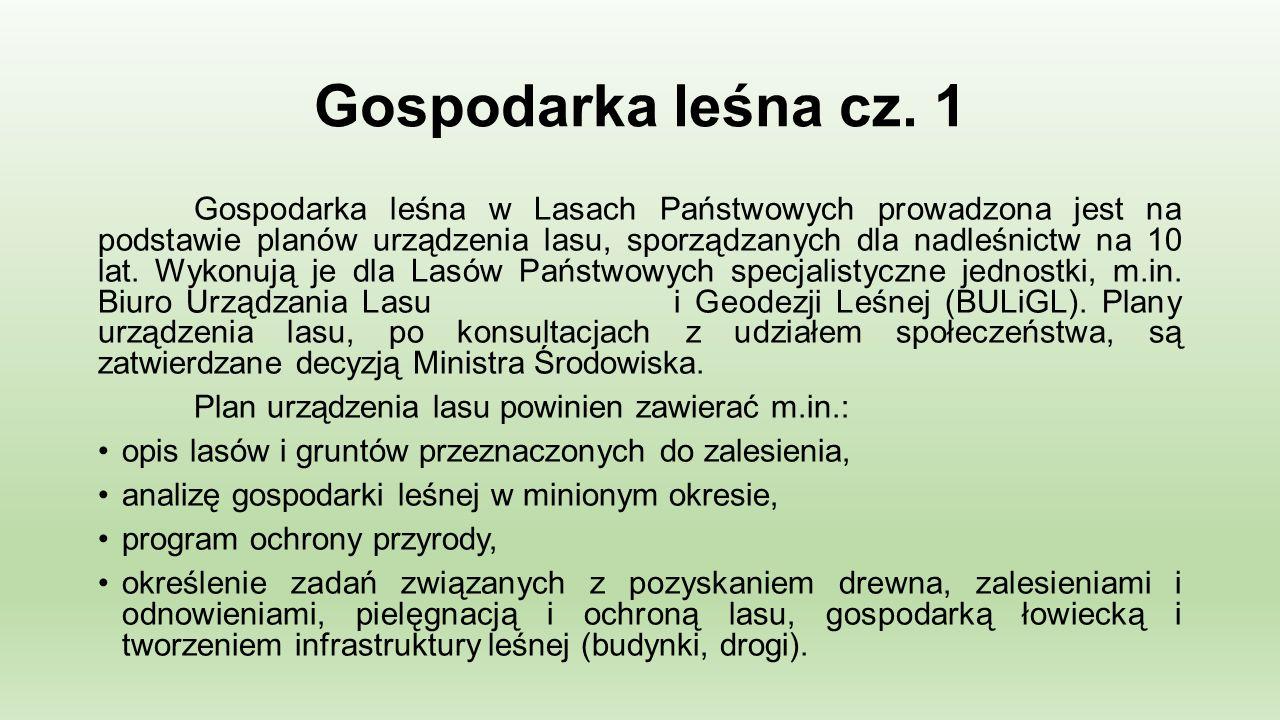 Gospodarka leśna cz.