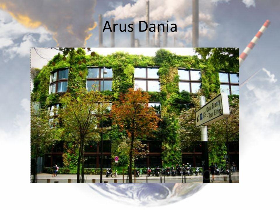 Arus Dania