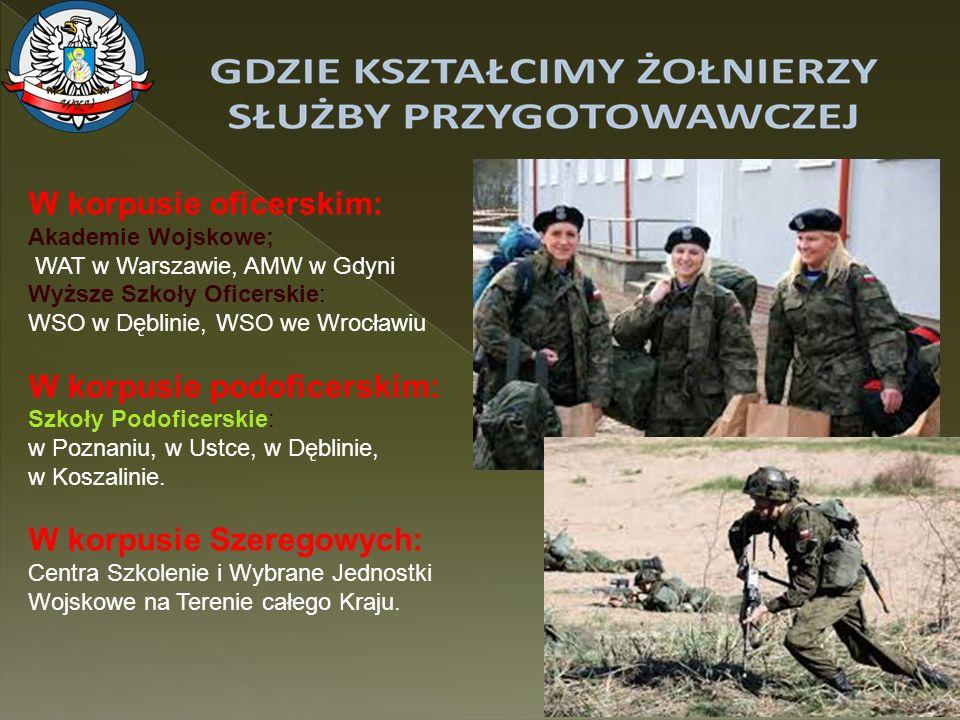 7 SŁUŻBA PRZYGOTOWAWCZA WARUNKI POWOŁANIA DO SŁUŻBY PRZYGOTOWAWCZEJ Do służby przygotowawczej może być powołana osoba : - niekarana za przestępstwo umyślne, -posiadająca obywatelstwo polskie, -odpowiednią zdolność fizyczną ( kat.