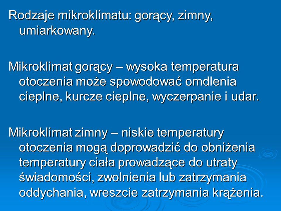 Rodzaje mikroklimatu: gorący, zimny, umiarkowany.