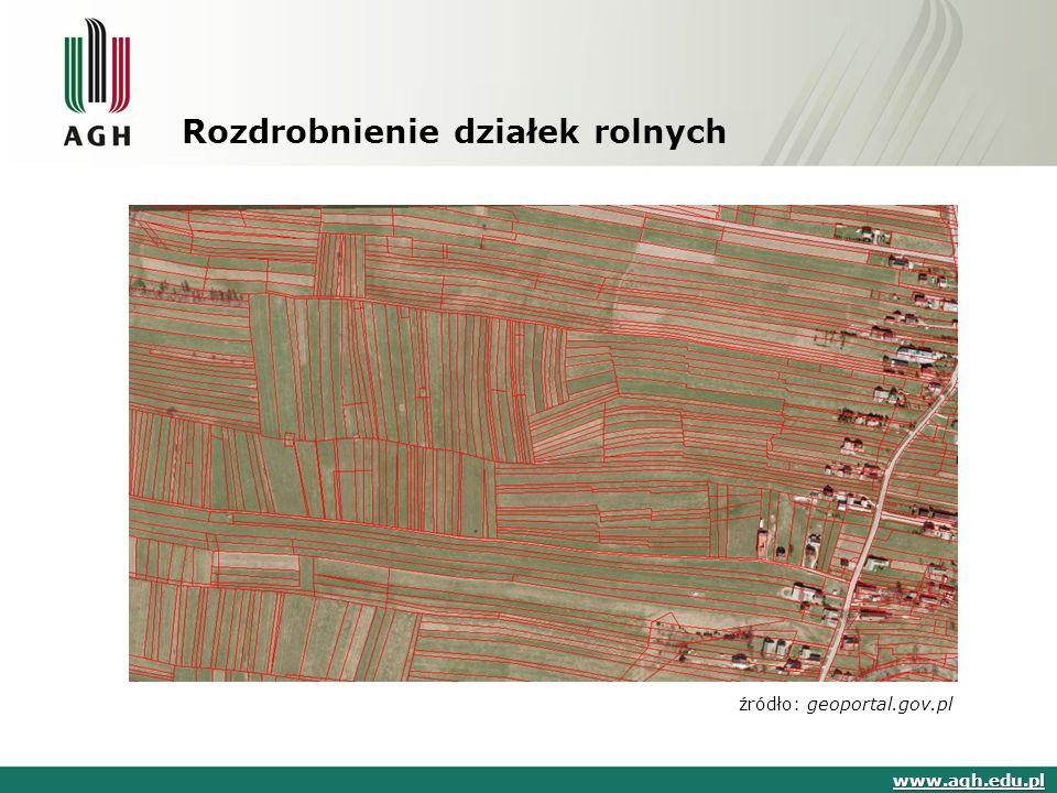Algorytm ogólny www.agh.edu.pl źródło: opracowanie własne