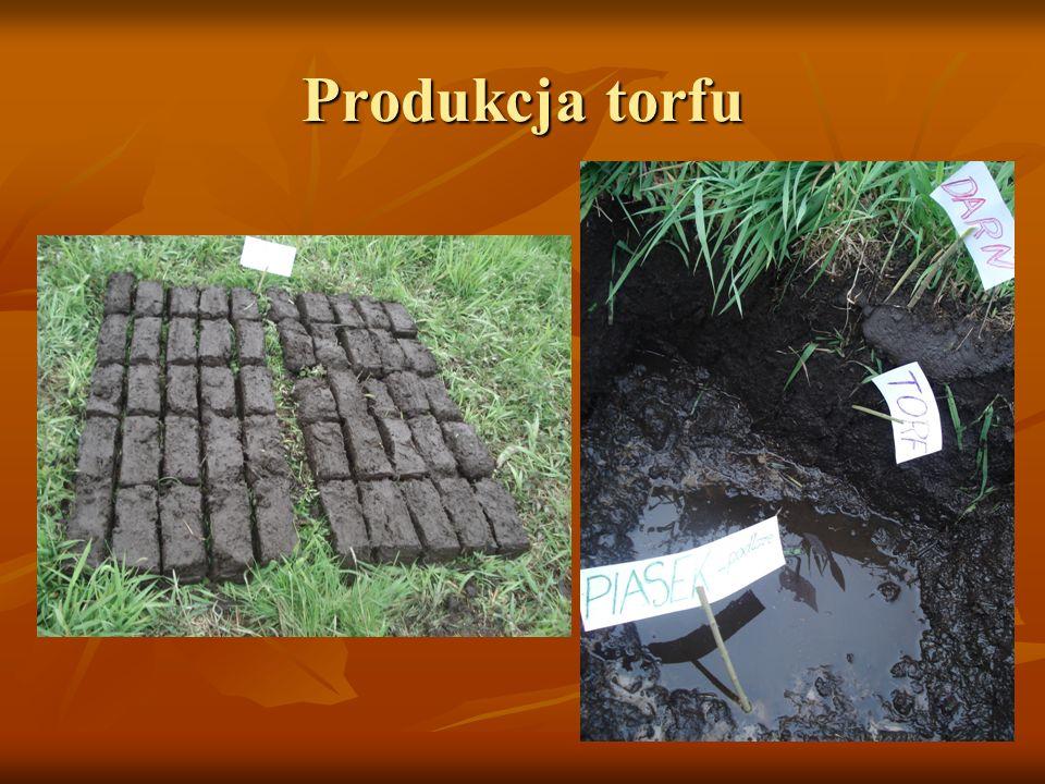 Produkcja torfu