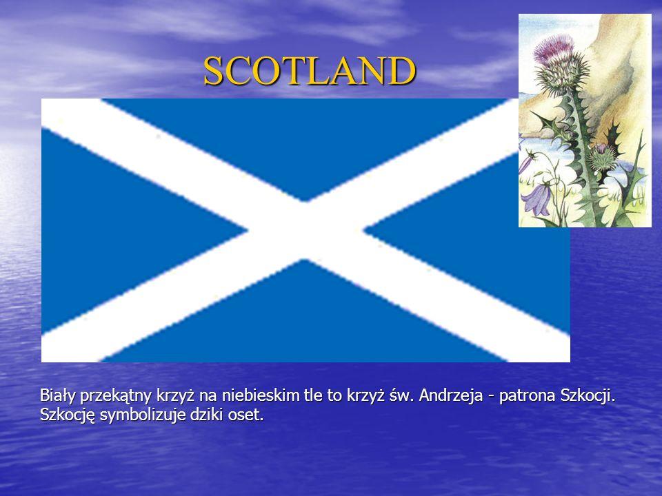 SCOTLAND Biały przekątny krzyż na niebieskim tle to krzyż św.