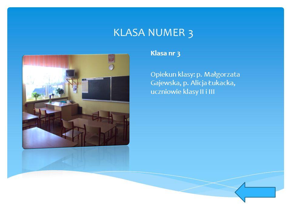 KLASA NUMER 3 Klasa nr 3 Opiekun klasy: p. Małgorzata Gajewska, p. Alicja Łukacka, uczniowie klasy II i III